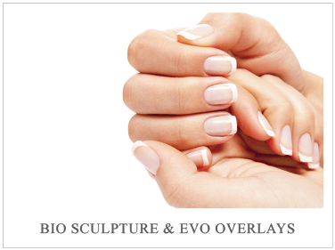 BioSculpture & Evo Overlays